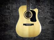 WASHBURN GUITARS Electric-Acoustic Guitar D10SCE